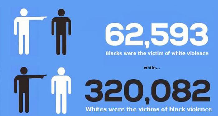 Statistics Reveal The Truth About Black And White Crime In America (infographic)