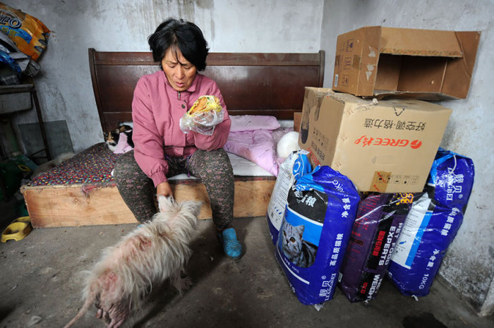 Chinese Woman Travels 1,500 Miles To Save Dogs From A Dog Eating Festival (16 pics)