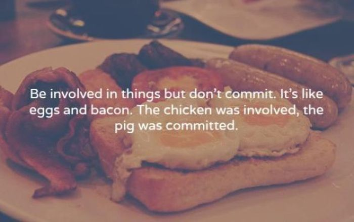 Amusing Truths That You Just Can't Argue With (12 pics)