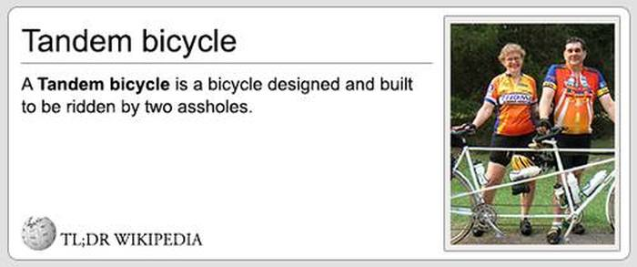 Wikipedia Definitions That Tell You Everything You Need To Know (24 pics)