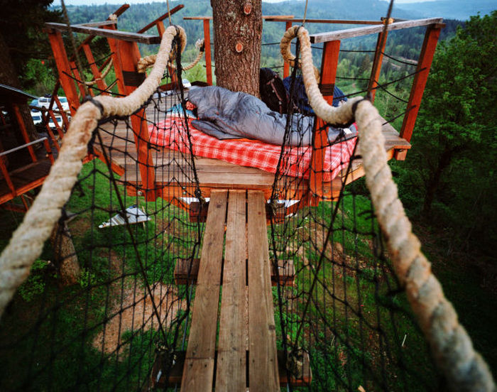 Designer Makes His Dream Come True By Building The Ultimate Tree House (19 pics)