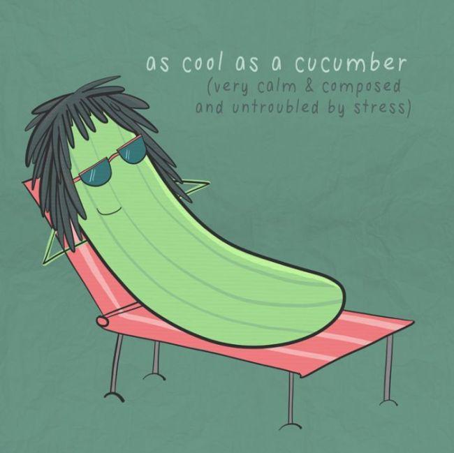 Illustrations That Explain Funny English Idioms (10 pics)