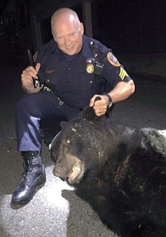 College Party Gets Crashed By Black Bear (5 pics)