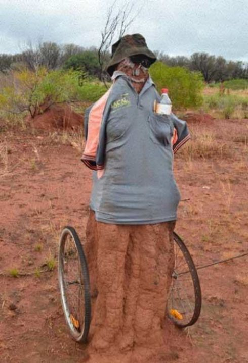 Australian Citizens Are Dressing Up Termite Mounds In Funny Costumes (9 pics)