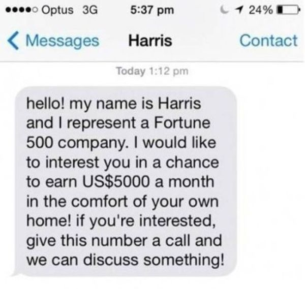 Genius Troll Gives Text Spammer A Taste Of His Own Medicine (4 pics)