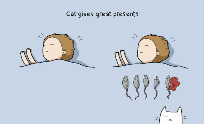 10 Reasons Why Everyone Needs A Cat (11 pics)
