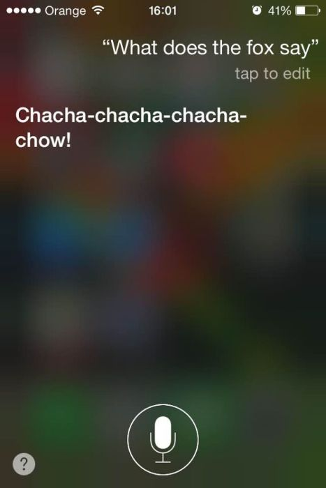 You Can Always Count On Siri To Give You An Honest Answer (20 pics)