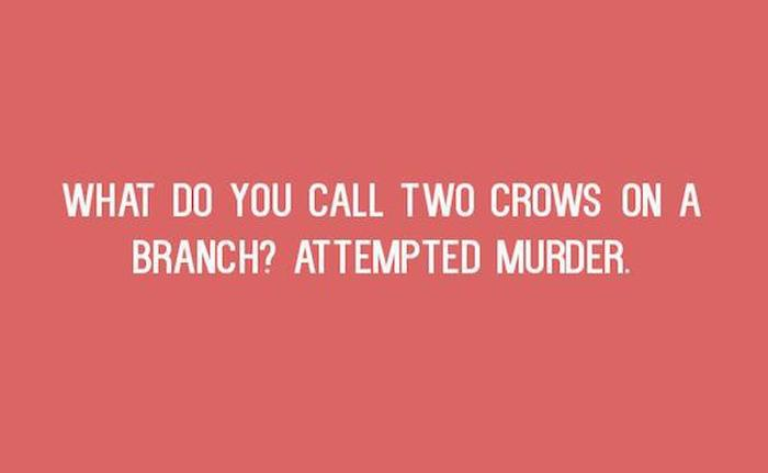 Simple But Funny Puns You Just Have To Laugh At (20 pics)