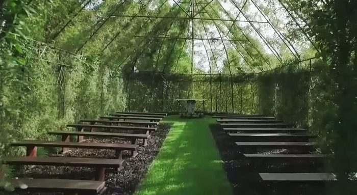 Man Spends 4 Years Growing A Live Tree Church In New Zealand (7 pics)