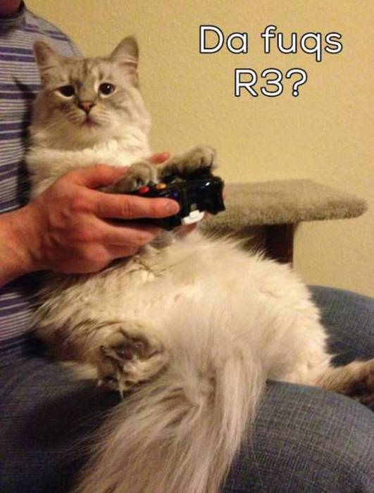 Gamers Just Want To Have Fun (59 pics)
