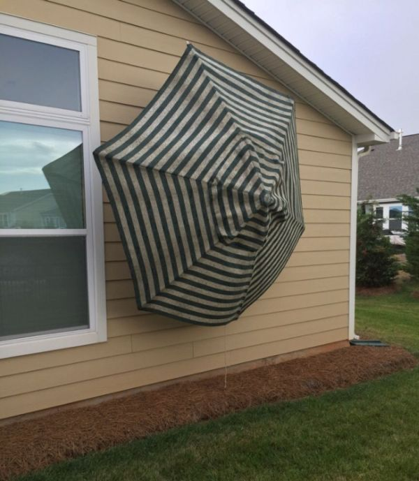 Hurricane Winds Turn An Umbrella Into A Deadly Weapon (3 pics)