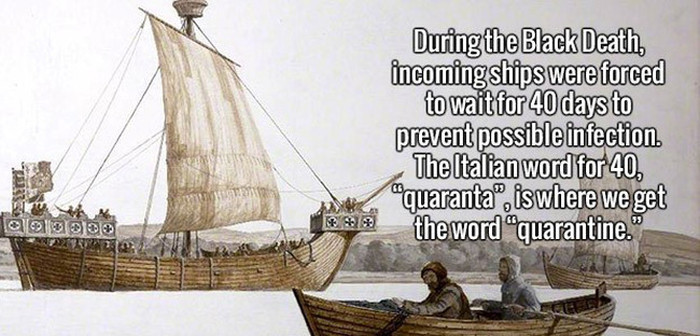 You'll Be Much Smarter After You Learn These Fun Facts (20 pics)