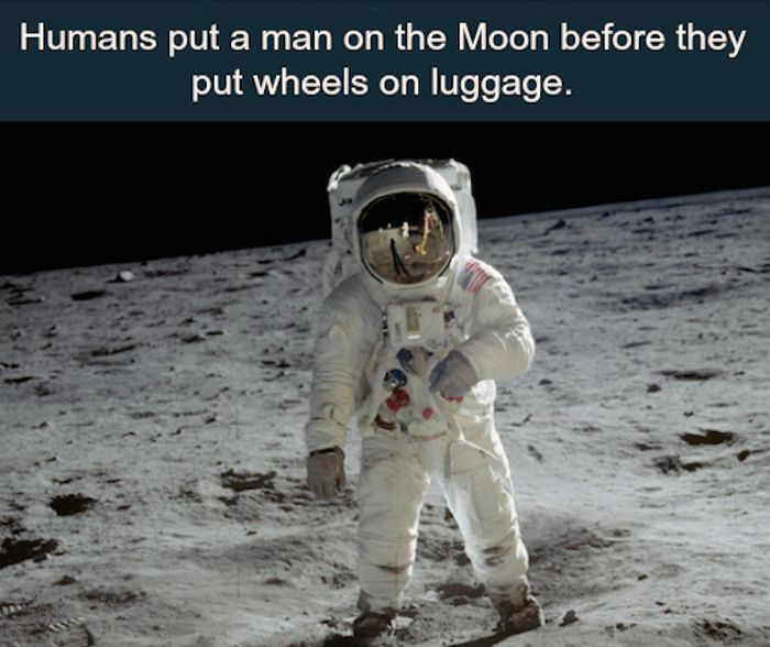 Awesome Facts That Make Great Conversation Starters (25 pics)