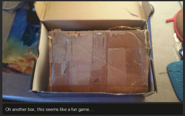 Man Finds Mysterious Box In His Apartment (9 pics)