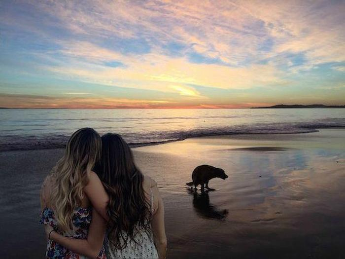 These Girls Asked For Photoshop Help And The Internet Had A Field Day (27 pics)