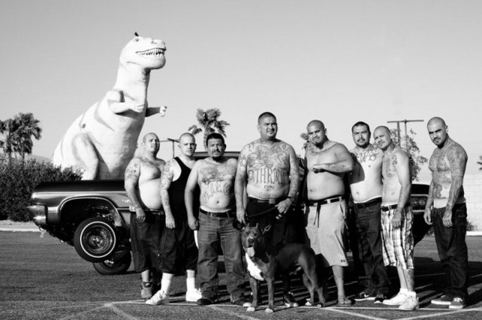 Australian Photographer Provides An Inside Look At A Mexican Gang (20 pics)