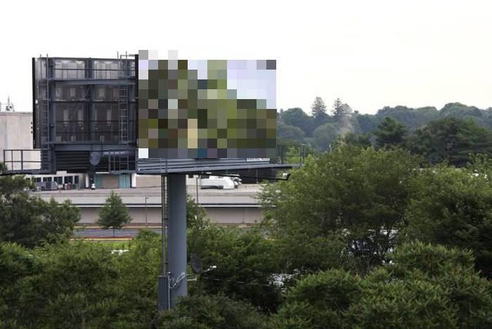Man Brings Nature To The Masses Using Digital Billboards (6 pics)