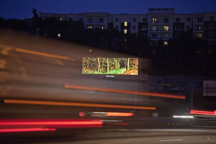 Man Brings Nature To The Masses Using Digital Billboards (6 pics)