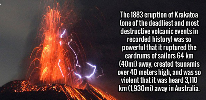 Random Facts To Help You Satisfy Your Curiousity (20 pics)
