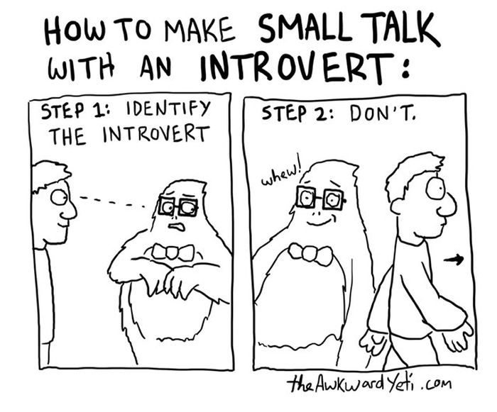 Those Special Moments In Life That Only Introverts Can Understand (28 pics)