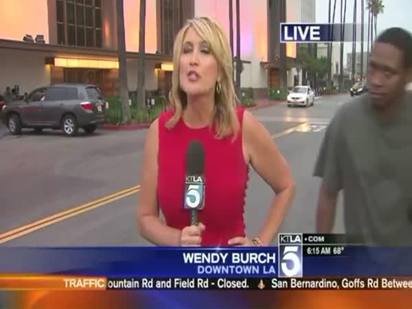 Videobomb Scares Reporter