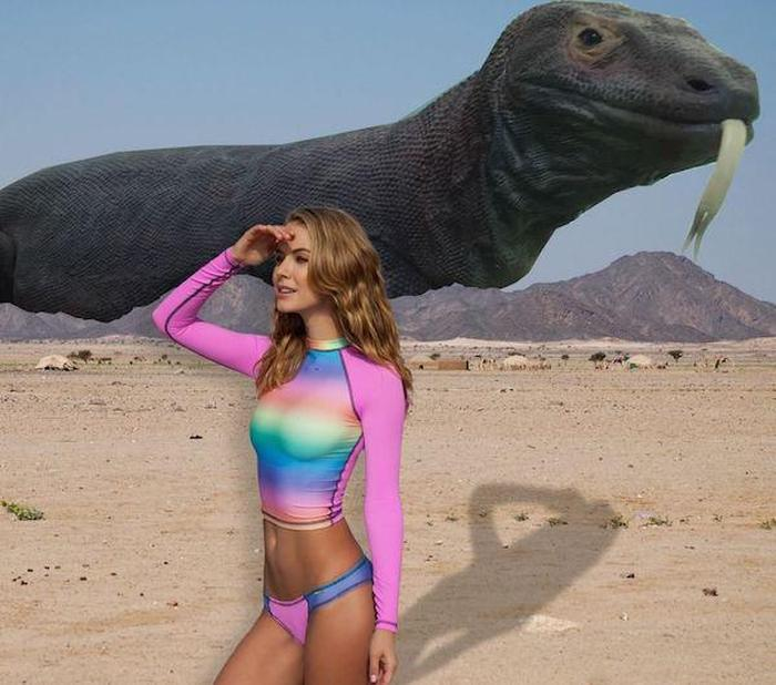 This Girl Wanted Her Picture Photoshopped And The Internet Was Happy To Help (22 pics)