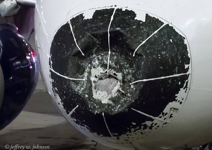 Delta Pilot Makes Emergency Landing After Plane Is Damaged By Hail (4 pics)