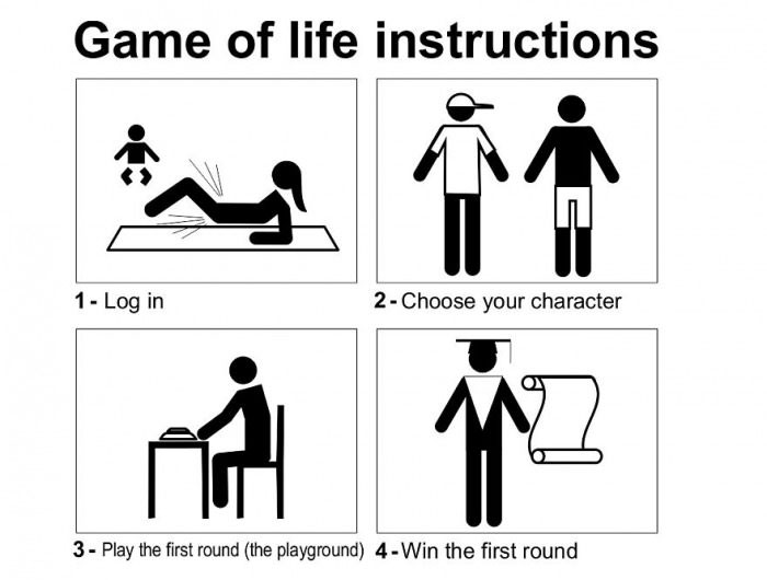 Instruction Manual For The Game Of Life (4 pics)