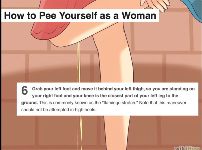 WikiHow Answers To Bizarre Questions You Didn't Know People Asked (16 pics)