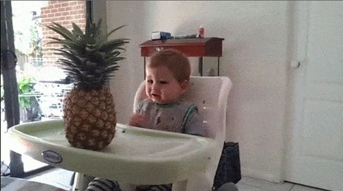 16 Awesome Gifs Of People And Things Scaring Kids (16 gifs)