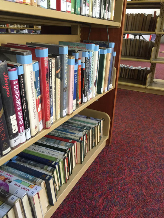 Secret Library Tip That The Librarians Don't Want You To Know (3 pics)