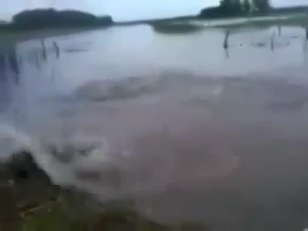 Crazy Fish Jumps