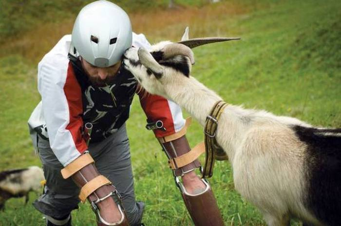 Meet The Man Who Decided To Become A Goat (7 pics)