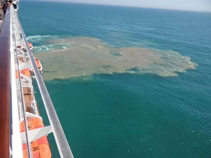 This Is How Much Sewage Cruise Ships Dump Into The Ocean Every Year (3 pics)