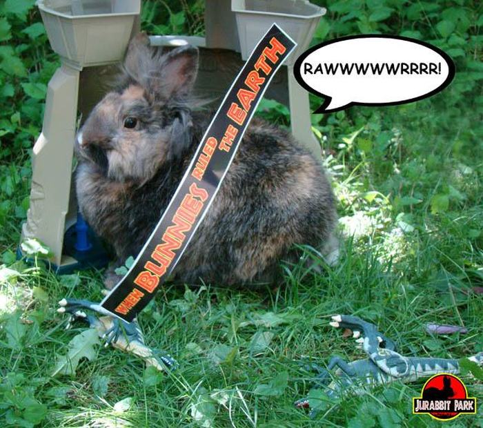 Jurabbit Park Recreates Famous Scenes From Jurassic Park Using A Rabbit (9 pics)