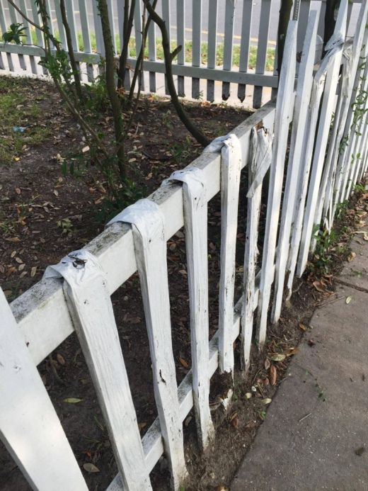 Termites Did Some Serious Damage To This Fence (3 pics)