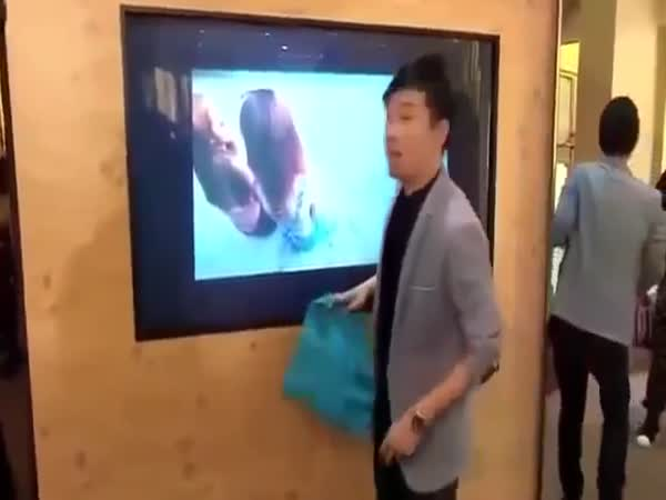 TV Trick