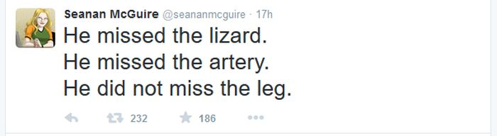Angry Lizard Gets Stuck In A Man's Leg (17 pics)
