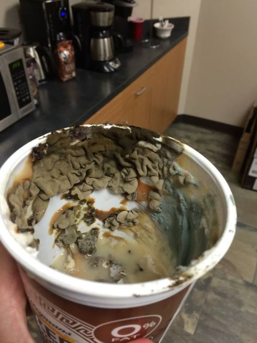 Disgusting Foods That Were Found In The Office Refrigerator (16 pics)