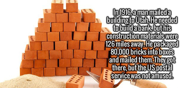 Satisfy Your Craving For Knowledge With These Fun Facts (20 pics)