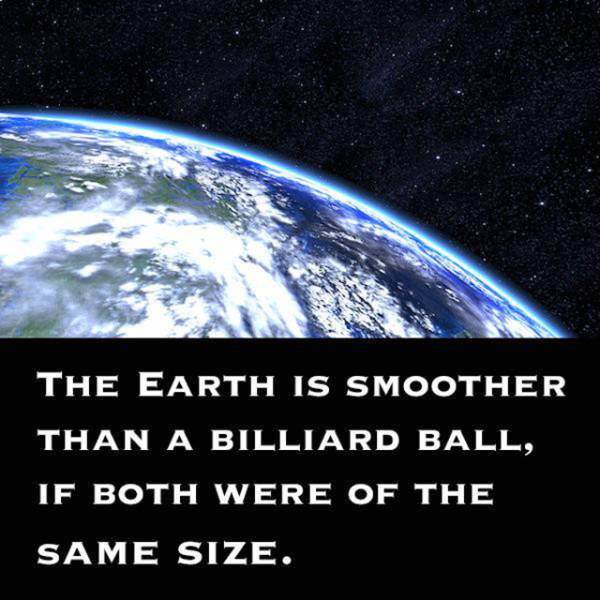 Strange Facts That Are True (30 pics)