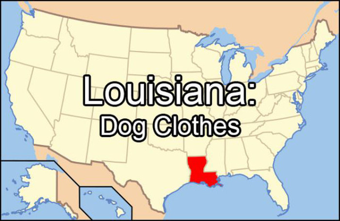 Embarrassing Things That Each State Googles More Than Any Other (51 pics)