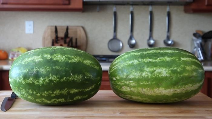 How To Skin A Watermelon (10 pics)