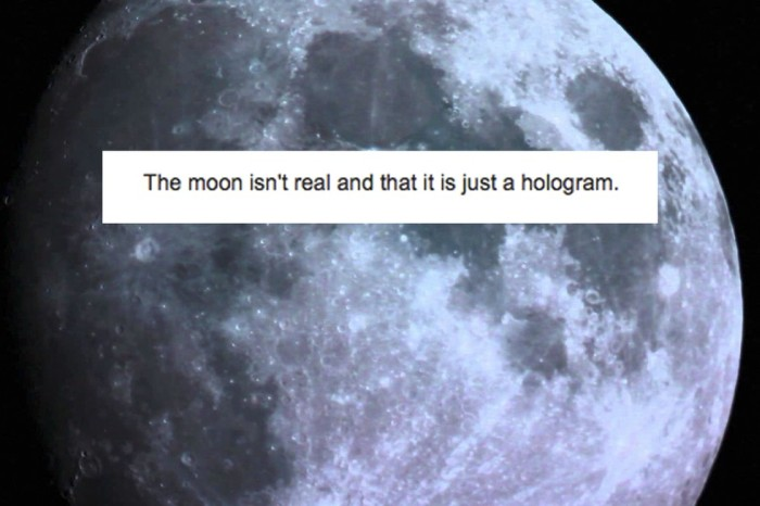 Weird Conspiracy Theories (19 pics)