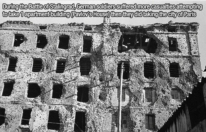 Interesting Facts (15 pics)