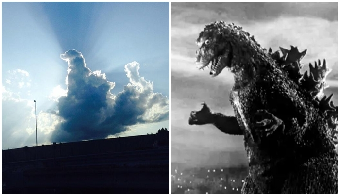 Things That Look Similar (32 pics)