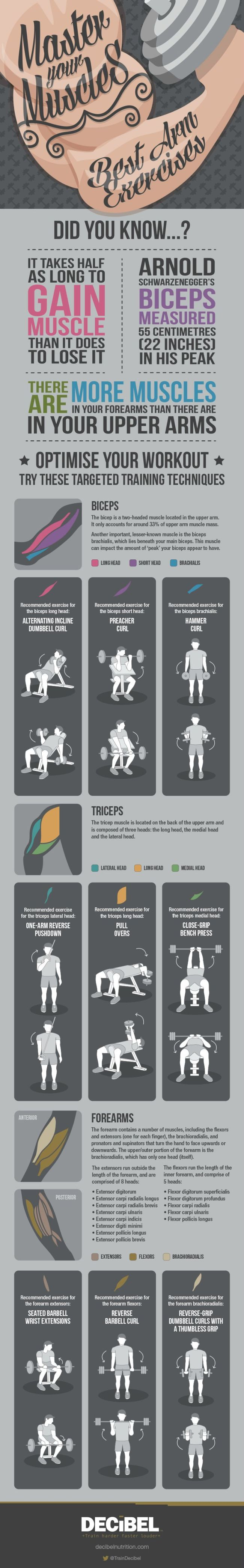 Master Your Muscles (infographic)