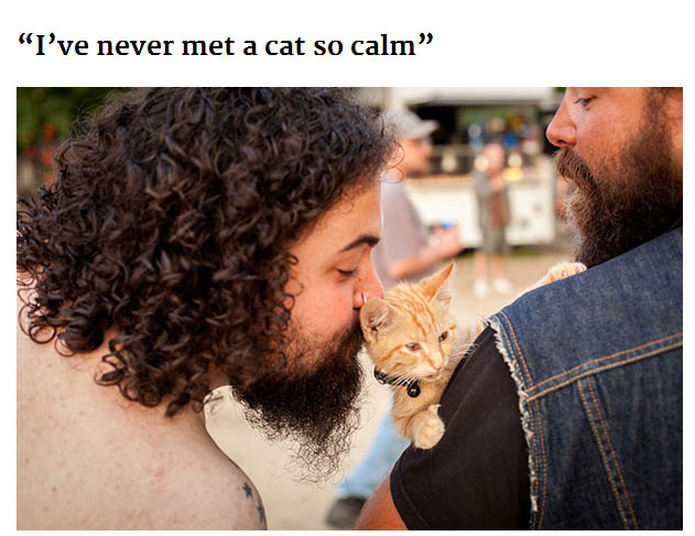 Cat Gets Rescued By Biker Then Goes On A Road Trip (11 pics)