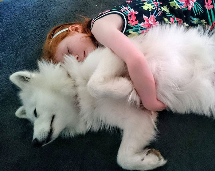 A Tribute To Man's Best Friend (24 pics)