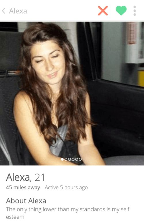You're Definitely Going To Swipe Right For These Tinder Profiles (29 pics)